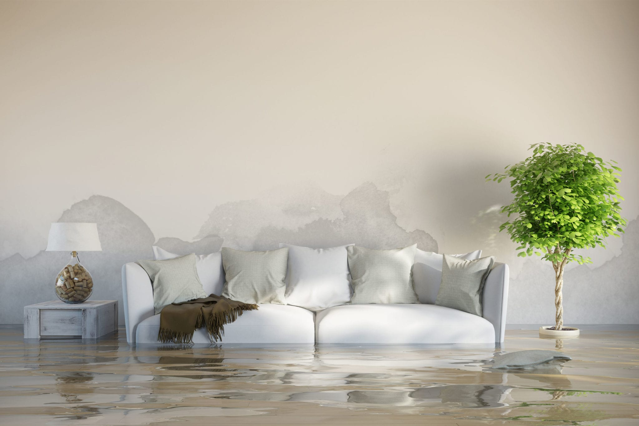 Your House Has Flooded -- What Texans Should Do